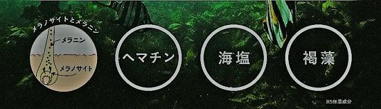 haru黒髪プロの白髪ケア成分